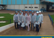Trainees finalizam primeira etapa do programa